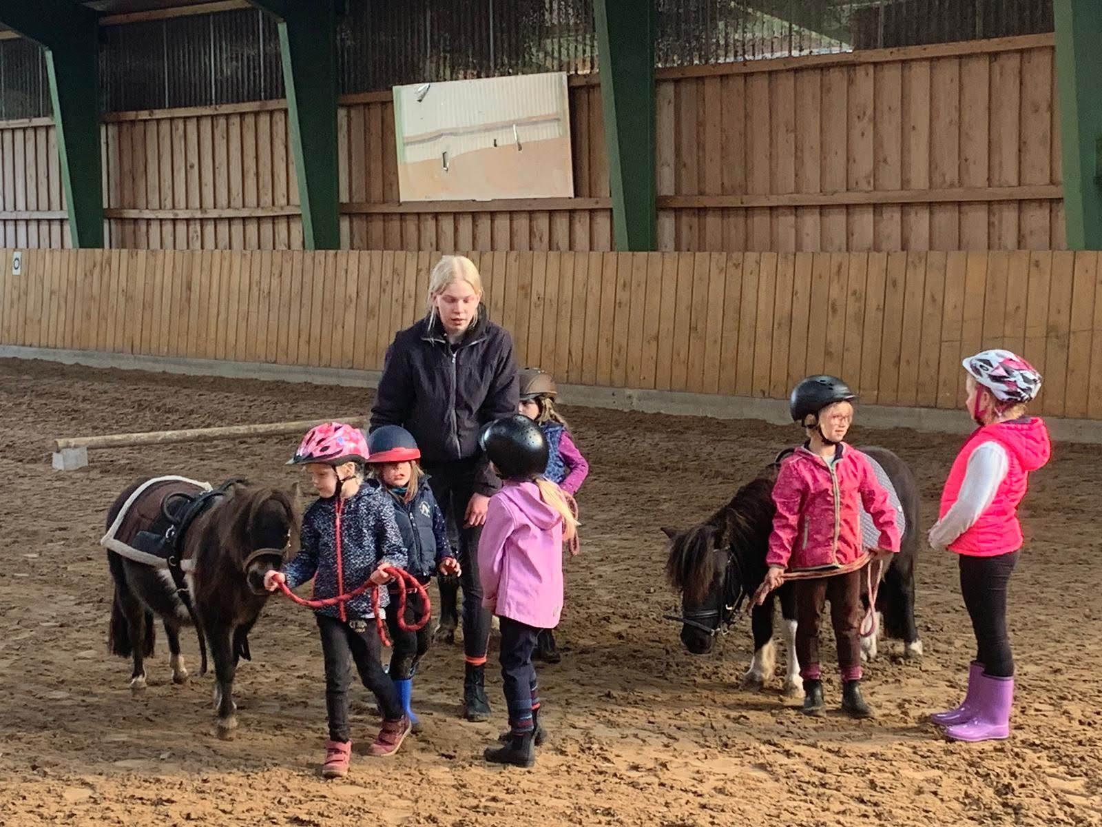 Ponyschule2